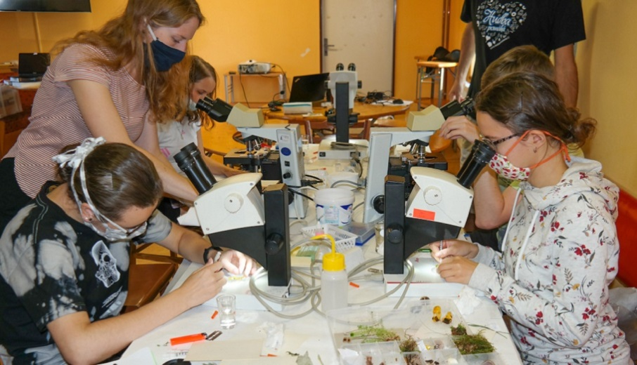 "The Summer School: ""From Fungal Morphology to Genotype"""